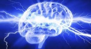New Technology Facilitates Precise Measurement Of The Brain Activity